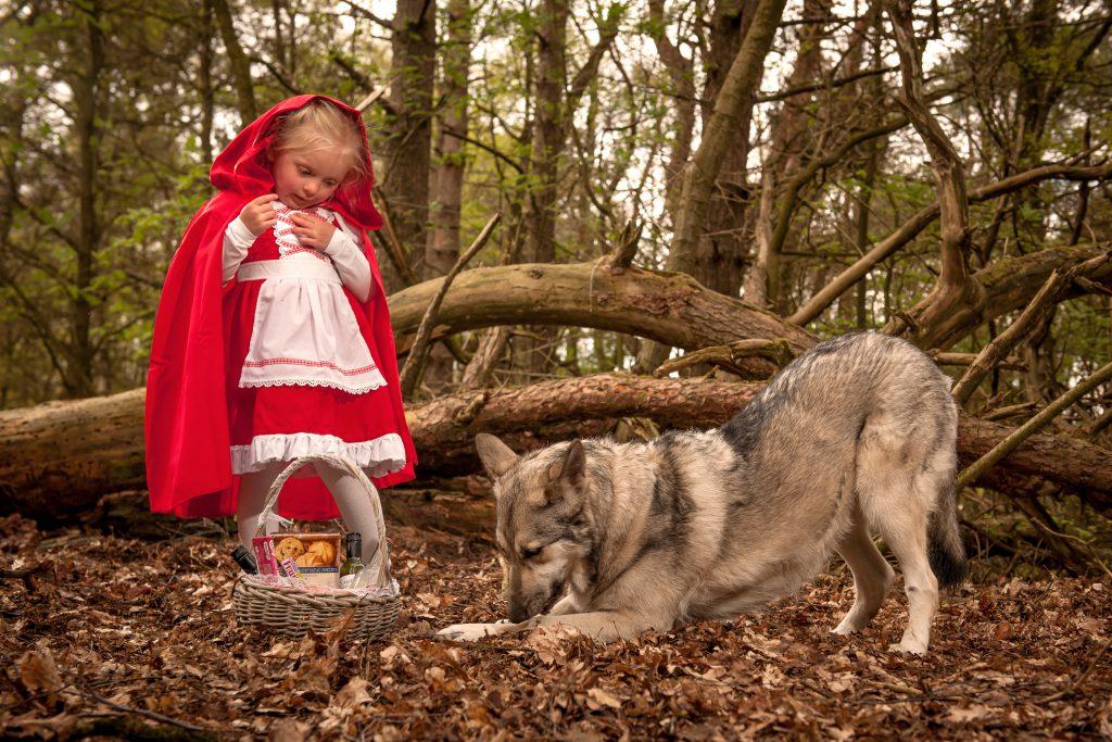 wolvenKRACHT-trainingen